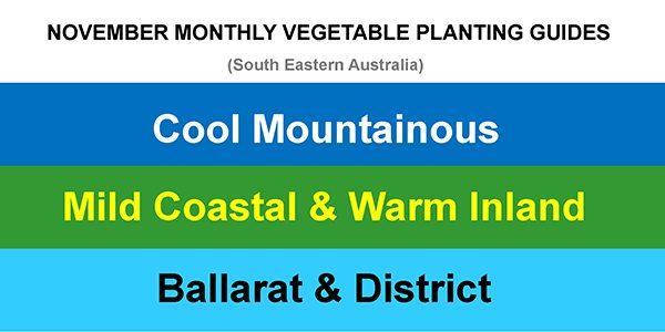 2020-10-24 NOVEMBER MONTHLY VEGETABLE PLANTING GUIDES UPDATE