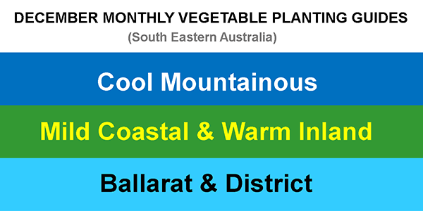 2020-11-26-DECEMBER-MONTHLY-VEGETABLE-PLANTING-GUIDES-UPDATE