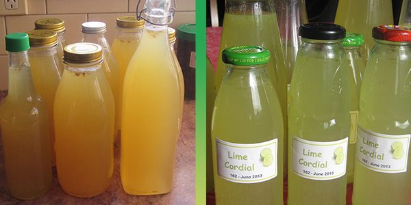 FRUIT CORDIAL - FEATURE